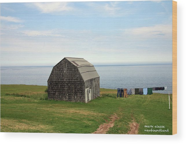 Newfoundland Wood Print featuring the photograph Clothline by Mark Alesse