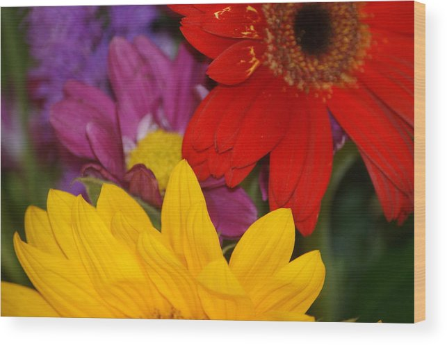 Flower Wood Print featuring the photograph Colorful Flowers by Liz Vernand