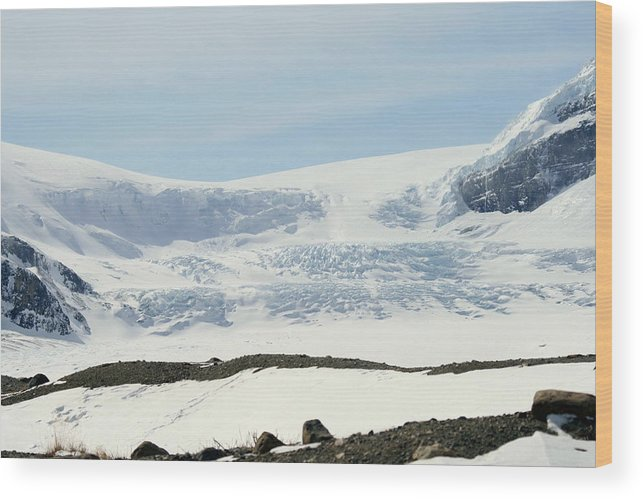 Glacier Wood Print featuring the photograph Columbia Icefields by Tiffany Vest