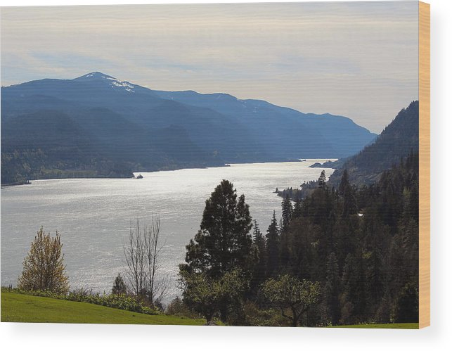 Travel Wood Print featuring the photograph Columbia River by Nicholas Miller