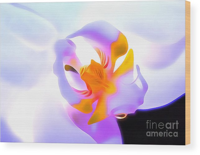 Orchid Wood Print featuring the digital art Compassion by Krissy Katsimbras