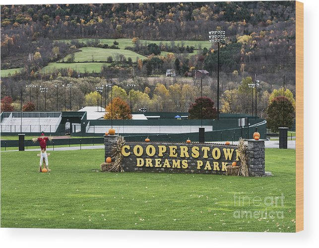 Americana Wood Print featuring the photograph Cooperstown Dreams Park by John Greim