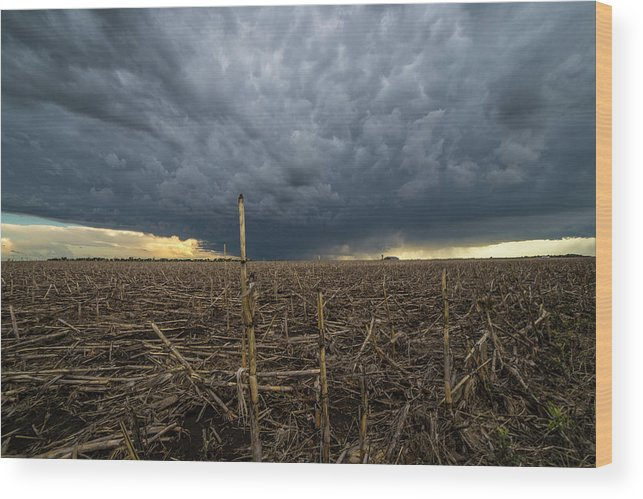 Tornado Warned Wood Print featuring the photograph Corsica by Aaron J Groen