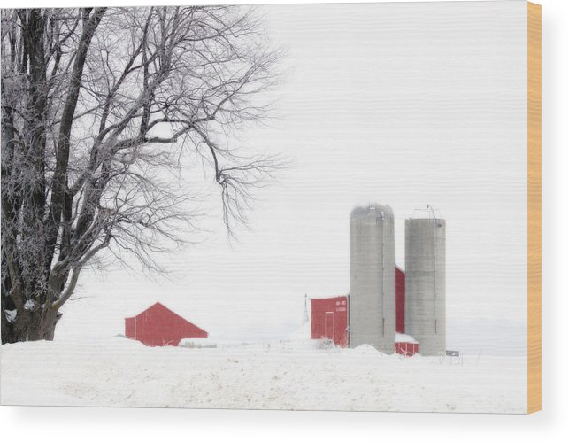 Red Wood Print featuring the photograph Country Red And White by Cathy Beharriell