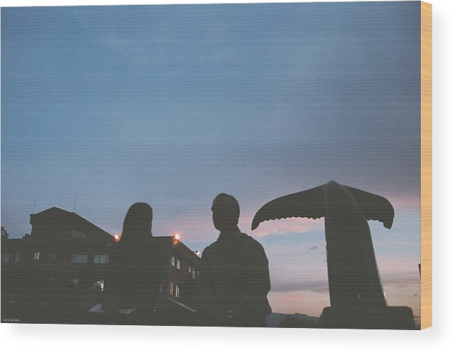 Wall Wood Print featuring the photograph Couple And Cetacean by David Cardona