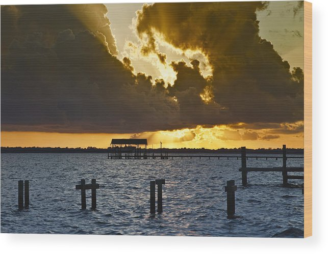 Bay Wood Print featuring the photograph Courtship by Janet Fikar