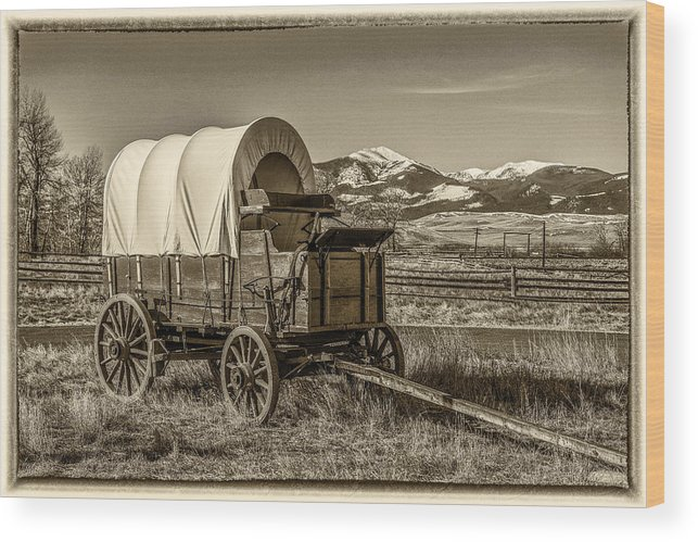 Covered Wagon Wood Print featuring the photograph Covered Wagon by Paul Freidlund