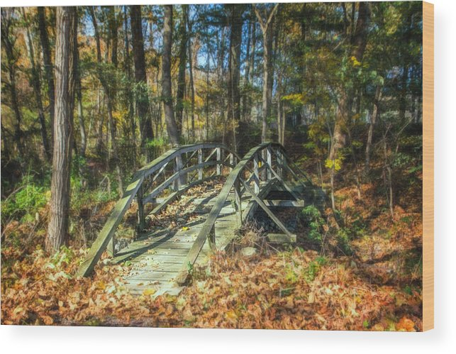 Art Wood Print featuring the photograph Creek Crossing by Tom Mc Nemar