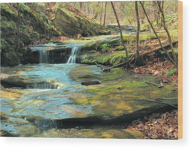 Don Robinson State Park Wood Print featuring the photograph Creek In Dappled Light At Don Robinson State Park 1 by Greg Matchick