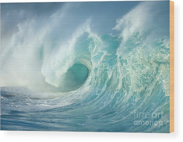 Aqua Wood Print featuring the photograph Curling Wave by Vince Cavataio - Printscapes