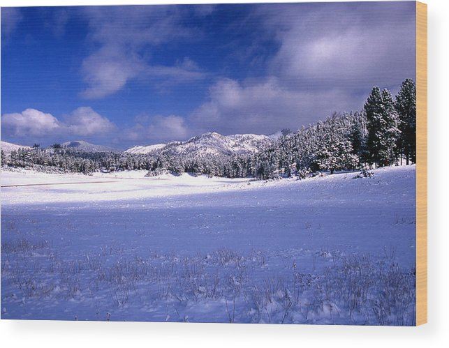 State Park Wood Print featuring the photograph Custer State Park by Barry Shaffer
