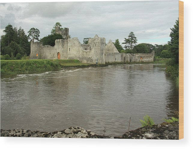 Castles Wood Print featuring the photograph Desmond Castle, Limerick, Ireland by Aidan Moran