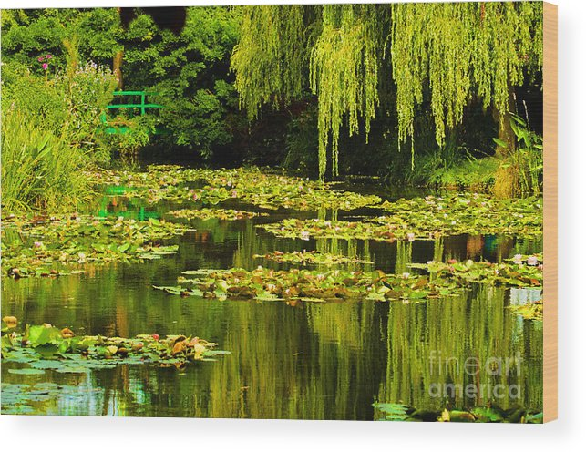 Water Wood Print featuring the photograph Digital Paining Of Monet's Water Garden by MaryJane Armstrong