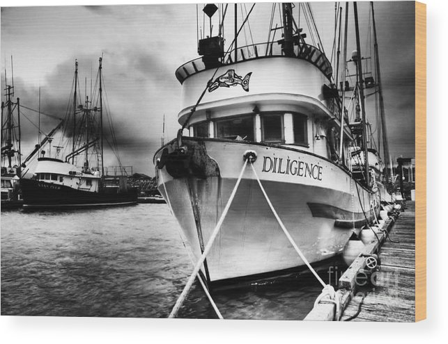 Boats Wood Print featuring the photograph Diligence Bw by Bob Christopher