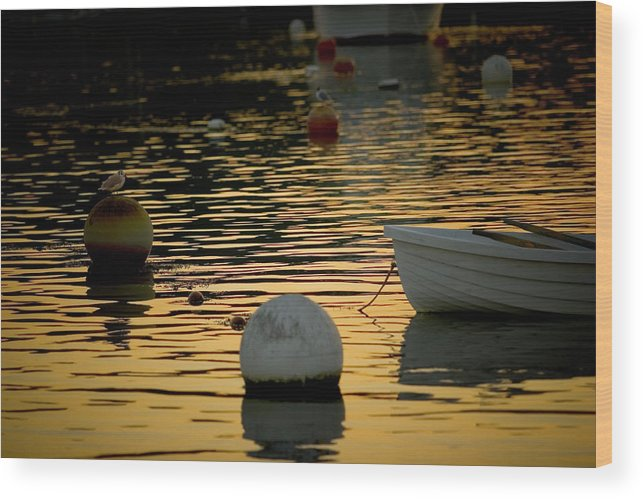 Orange Wood Print featuring the photograph Dingy And Mooring by Jack Foley