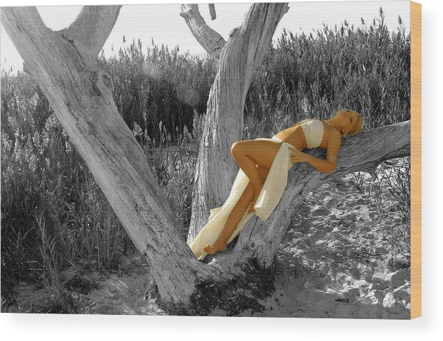 Tree Wood Print featuring the photograph Dream by Travis Aston