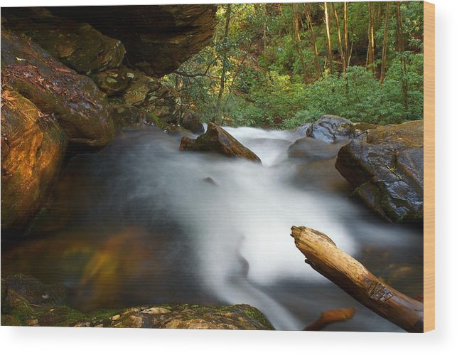 Waterfall Wood Print featuring the photograph Dropoff by Makena Wight Photography