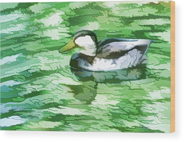Duck Wood Print featuring the painting Ducks Swimming In A Pond by Jeelan Clark
