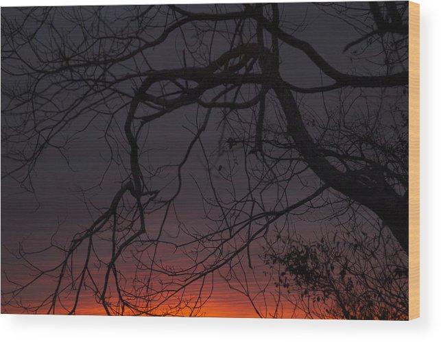 Sunset Wood Print featuring the photograph Dusk by Doug Bartholomew