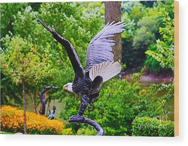 Nature Wood Print featuring the photograph Eagle In The Garden by Don Baker