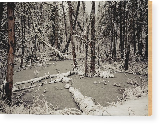 Scenic Wood Print featuring the photograph Early Winter by Todd Bissonette
