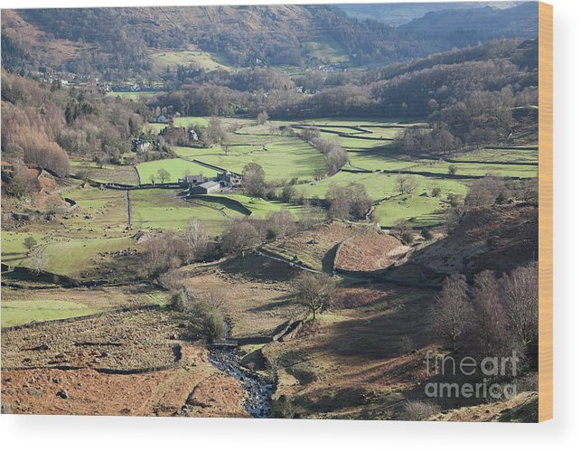 Easedale Wood Print featuring the photograph Easedale Beck, Landscape by Gavin Dronfield