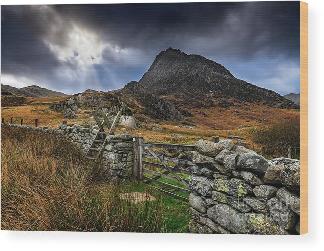 Tryfan Wood Print featuring the photograph East Face Tryfan Snowdonia by Adrian Evans