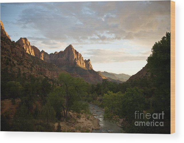 Utah Wood Print featuring the photograph Evening Light On Watchman by Carl Jackson