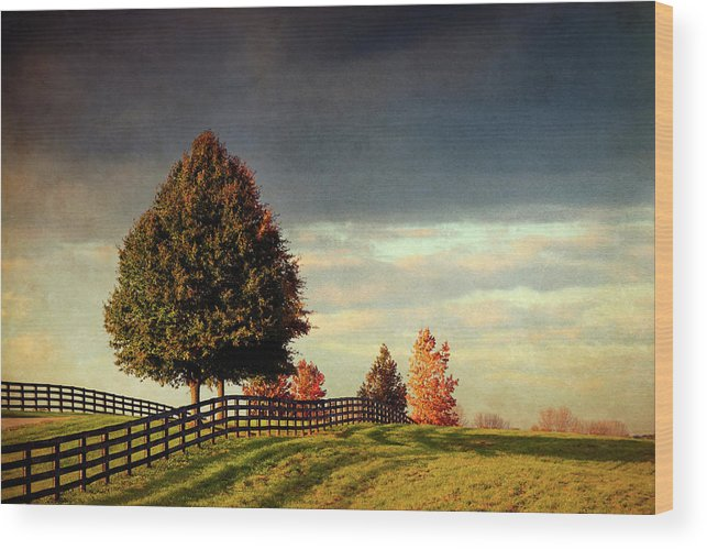 Fence Wood Print featuring the photograph Evening Pasture by Susan Isakson