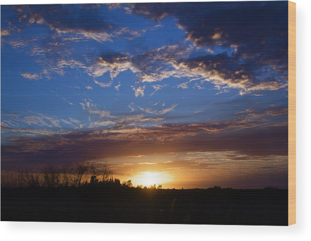 Sunset Wood Print featuring the photograph Everglade Sunset by Kyle Petersen