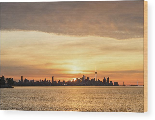 Georgia Mizuleva Wood Print featuring the photograph Every Morning Is Different - Toronto First Sunrays In Cyber Yellow by Georgia Mizuleva