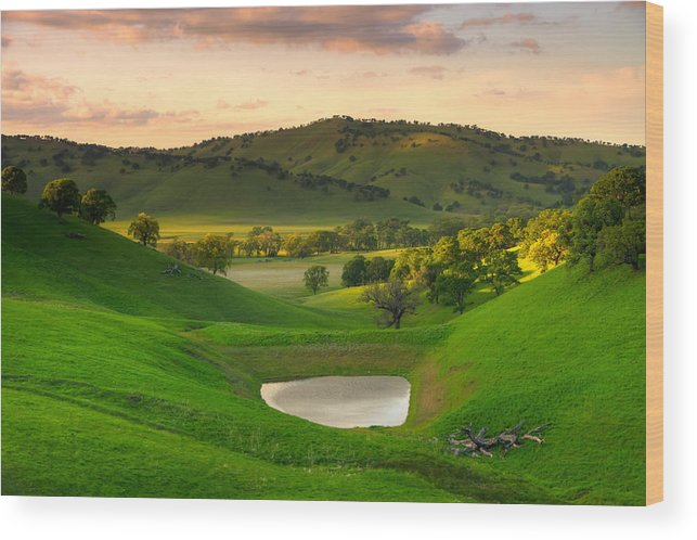 Landscape Wood Print featuring the photograph Fading Light At Round Valley by Marc Crumpler