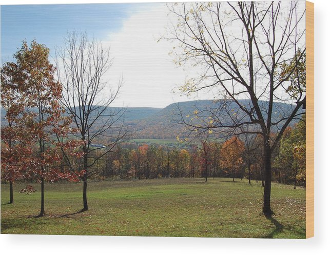 Colors Wood Print featuring the photograph Fall Colors In Corner Of A Field by Richard Botts