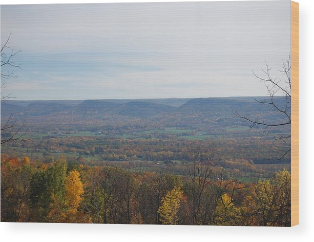 Fall Wood Print featuring the photograph Fall Colors In The Valley by Richard Botts