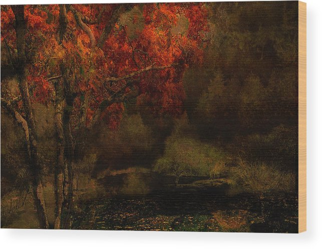 Fall Wood Print featuring the photograph Fall Woods by Jeff Burgess