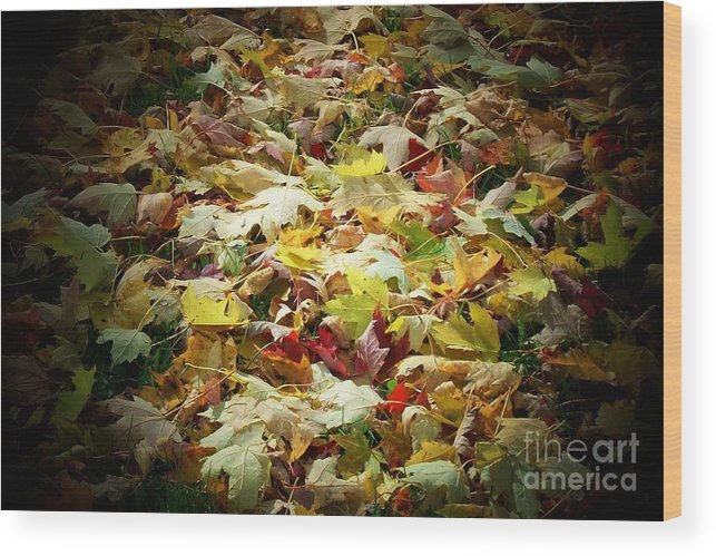 Leaves Wood Print featuring the photograph Fallen Leaves by Marjorie Imbeau