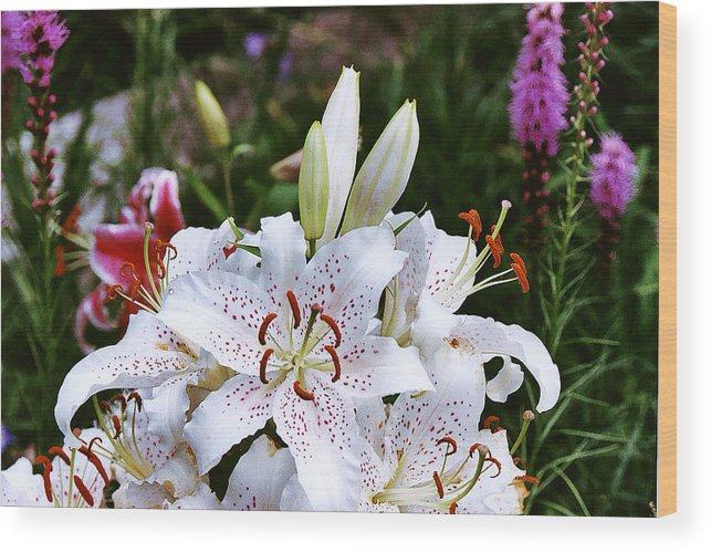 Summer Wood Print featuring the photograph Fancy White Lily In Garden by Roger Soule