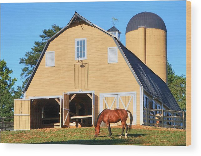 Farm Wood Print featuring the photograph Farm by Mitch Cat