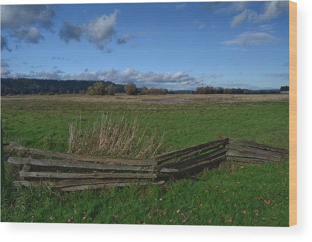 Fence Wood Print featuring the photograph Fence And Open Field by Frank Morris