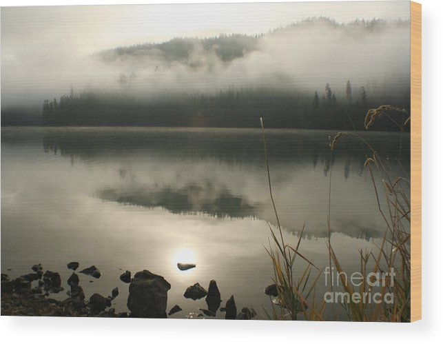 Mist Wood Print featuring the photograph Fernan Fog by Idaho Scenic Images Linda Lantzy