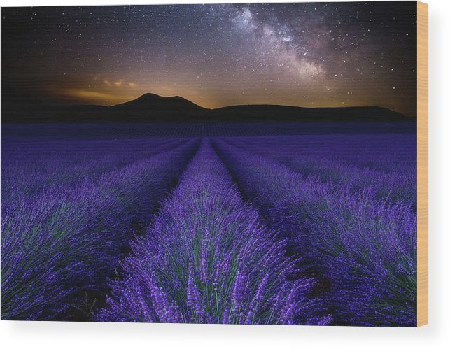Night Wood Print featuring the photograph Fields Of Eden by Jorge Maia
