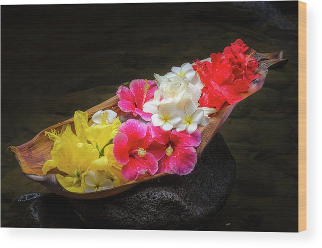 Flowers Wood Print featuring the photograph Flower Boat by Daniel Murphy