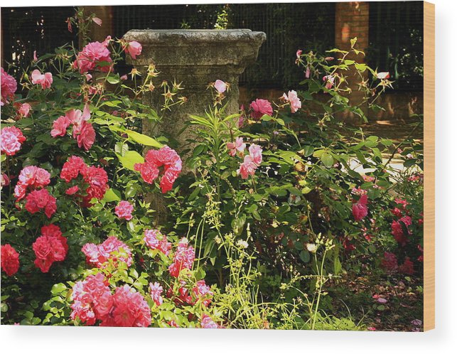 Venice Wood Print featuring the photograph Flowers In Garden In Venice by Michael Henderson