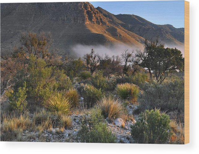 Sunrise Wood Print featuring the photograph Fog At Sunrise - Guadalupe Mountains by Stephen Vecchiotti