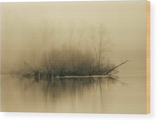 Day Wood Print featuring the photograph Fog Hovers Above The James River by Raymond Gehman