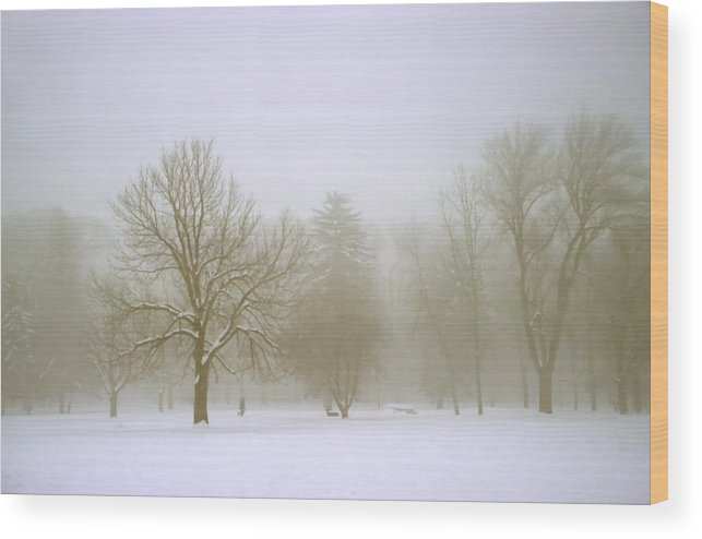Nature Wood Print featuring the photograph Foggy Morning Landscape 8 by Steve Ohlsen