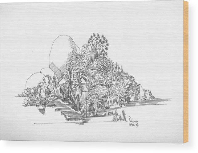 Landscape Wood Print featuring the drawing Foliage Trees And Rocks by Padamvir Singh