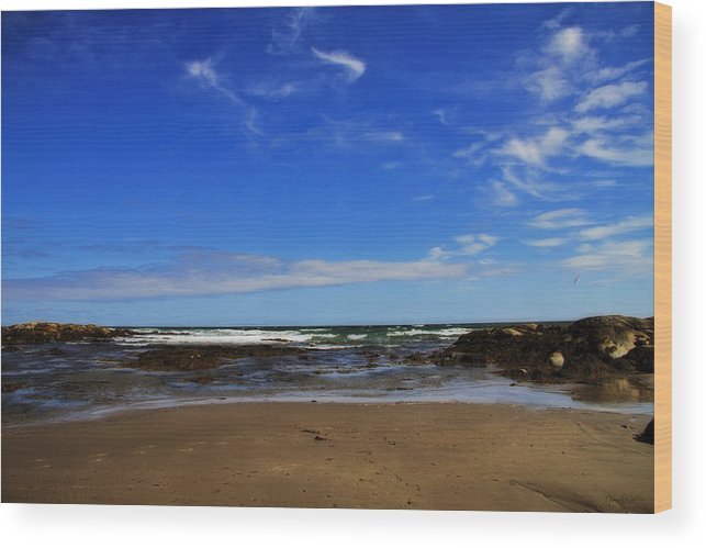 Beach Wood Print featuring the photograph Footsteps by Nancy Coelho