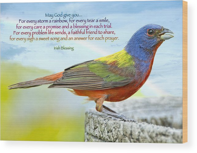 Painted Bunting Wood Print featuring the photograph For Every Storm A Rainbow Irish Blessing by Bonnie Barry