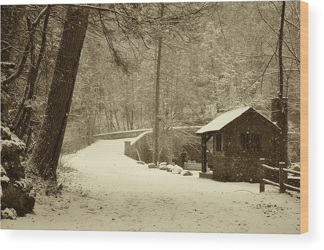 Wissahickon Wood Print featuring the photograph Forbidden Drive In Winter by Bill Cannon